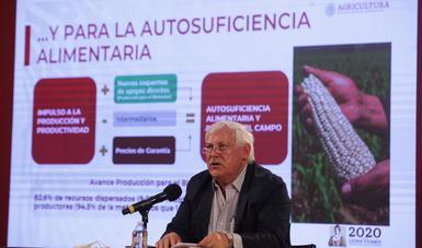 Estima Agricultura crecimiento en la producción de granos básicos en 2020, como parte de la estrategia de seguridad alimentaria para el país
