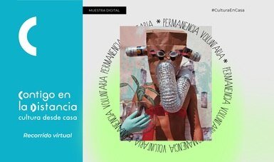 """Centro de la Imagen inaugurará en línea la muestra digital """"Permanencia voluntaria"""""""
