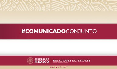 Las Secretarías de Relaciones Exteriores y de Salud expusieron proyectos de desarrollos mexicanos de vacunas a presentarse ante la CEPI