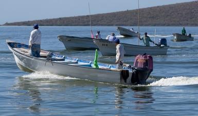 Reconoce Conapesca el cooperativismo pesquero este 4 de julio