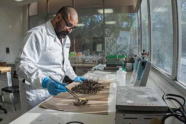 Analizan universitarios fertilidad del suelo a partir de materia orgánica