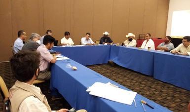Comunicado conjunto entre Gobierno de México y pueblo de Loma de Guamúchil-Cocórit, territorio yaqui, Sonora