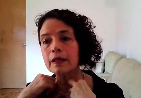 Investigadora de la UNAM, elegida presidenta de instancia de la OEA