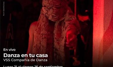 Danza en tu casa presenta solos de 24 artistas escénicos, vía streaming