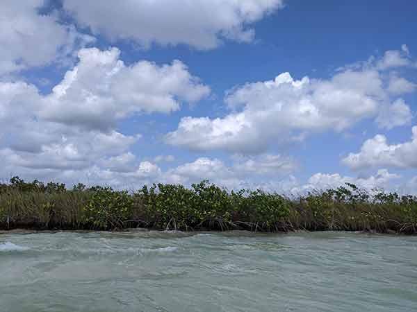 Pugnan por desarrollo sustentable de la Península de Yucatán