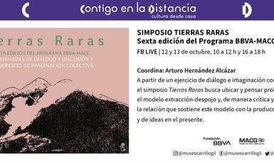 Tierras Raras, simposio virtual entre conocedores y artistas en el Museo de Arte Carrillo Gil