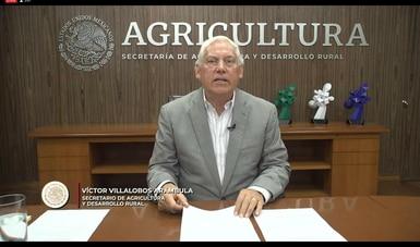 En esfuerzo conjunto, productores, cadenas agroalimentarias y gobierno garantizan el abasto de alimentos en el país: Agricultura