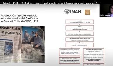 Recapitulan descubrimiento del 'antiguo pato de Tichiqueo' o 'dinosaurio michoacano'