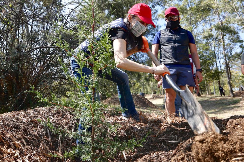 Recorre Jefa de Gobierno primera etapa de restauración de Tercera Sección del Bosque de Chapultepec