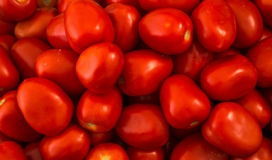 Rebasa superávit agroalimentario los nueve mil 700 millones de dólares al 3er trimestre de 2020