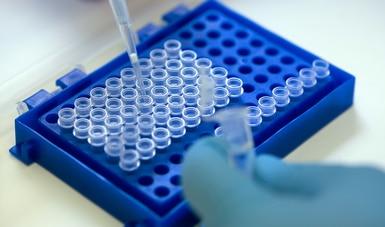 Se suma Agricultura a la Semana Mundial de Concienciación sobre el uso de antimicrobianos
