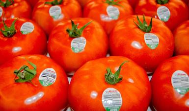 Rebasa superávit agroalimentario los 10 mil millones de dólares, a octubre 2020