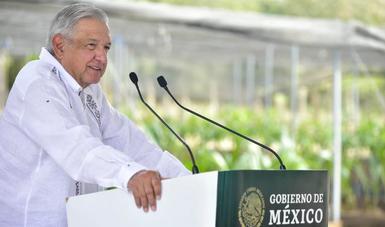 No hay límite de recursos para Sembrando Vida en Guerrero, afirma presidente desde Petatlán