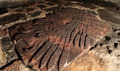Indaga INAH bajorrelieve de un águila real descubierto recientemente por el Proyecto Templo Mayor