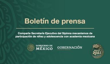 Comparte Secretaría Ejecutiva del Sipinna mecanismos de participación de niñez y adolescencia con academia mexicana