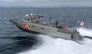 Refuerzan medidas de protección a la Vaquita Marina