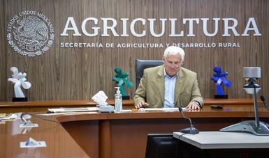 Ampliarán México y Nueva Zelanda cooperación tecnológica e intercambio comercial en el sector agroalimentario