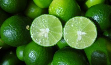 Aumentan 28.3 por ciento exportaciones mexicanas de cítricos y sus derivados entre enero y julio de 2021