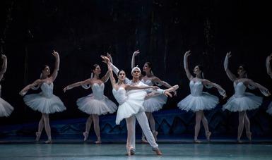 La Compañía Nacional de Danza regresa al Cenart con un Programa contemporáneo