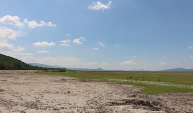Inician trabajos para desarrollar Plan de Rehabilitación del Lago de Cuitzeo