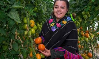 Promueven que pequeños y medianos agricultores del país amplíen comercialización de sus productos en el mercado estadounidense