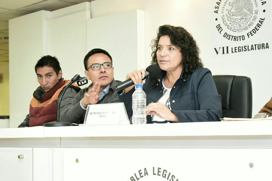 SOLICITA MORENA A AUTORIDADES OTORGAR PERMISO PARA EL RETIRO DE 12 MIL 849 ÁRBOLES CAÍDOS EN SAN SALVADOR CUAUHTENCO, ANTE RIESGO DE INCENDIO