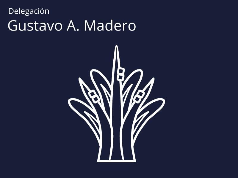 """RINDEN HOMENAJE A ADULTOS MAYORES EN LA DELEGACIÃ""""N GUSTAVO A. MADERO"""