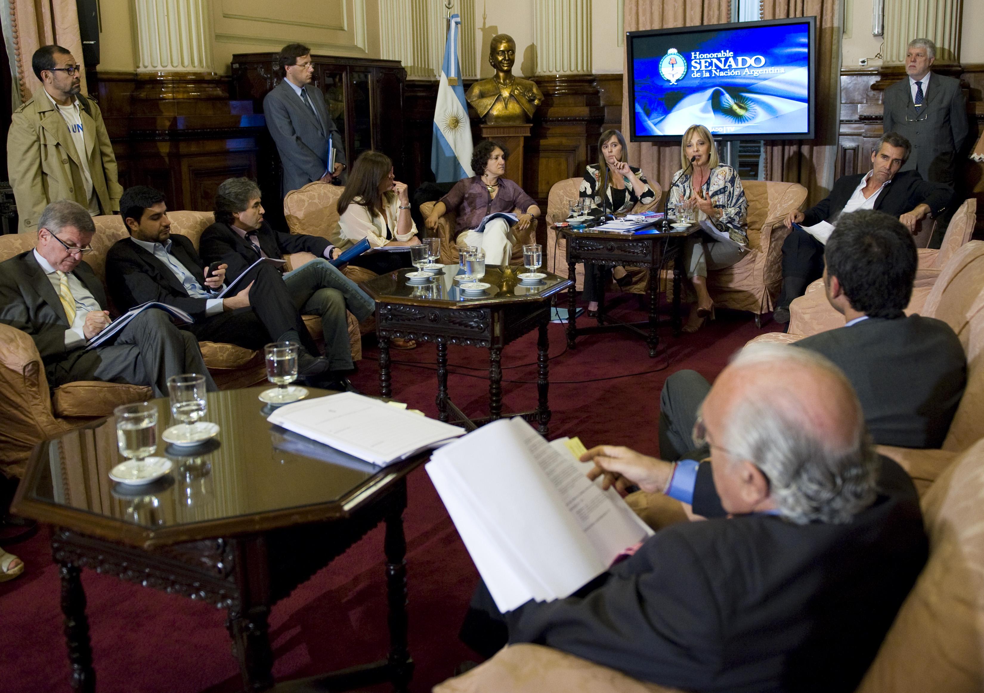 COMISIÓN BICAMERAL DE SEGUIMIENTO DE LA COMUNICACIÓN AUDIOVISUAL ARGENTINA APROBÓ LA DESIGNACIÓN