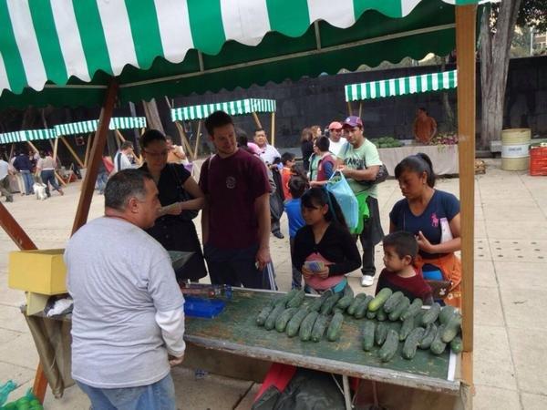 Exitoso Mercado de Trueque en el Monumento a la Revolución