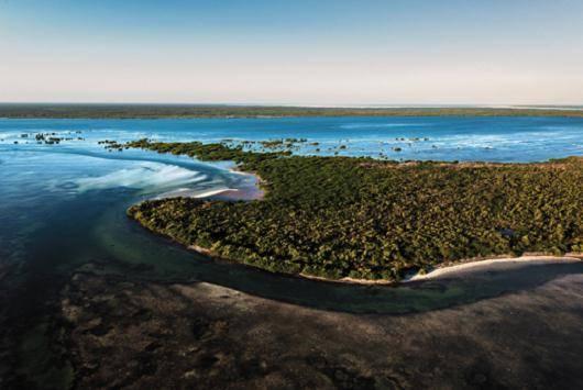 Senadores solicitarán la protección del área natural Yum Balam
