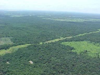 Aprueban reforma para fortalecer conservación de recursos naturales