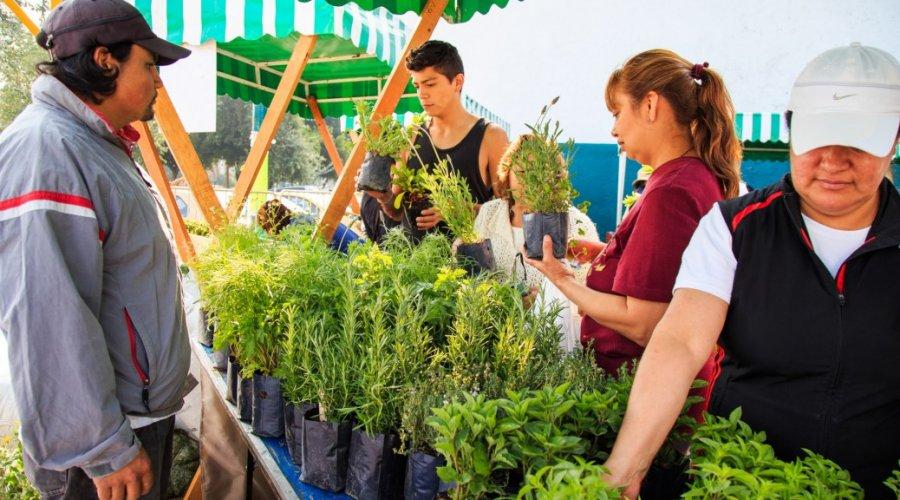 La Cocina de la Abuela llega este domingo al Mercado de Trueque en Bosque de Chapultepec