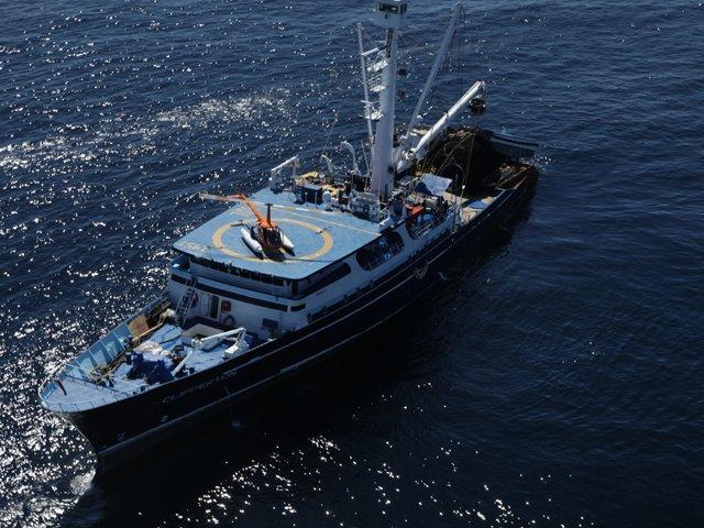 Anuncia titular de la SAGARPA inicio de temporada 2016 de captura de atún en el océano Pacífico