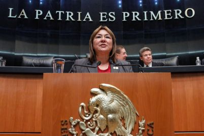 PRI: una reforma para proteger a adultos mayores y personas con discapacidad: senadora Margarita Flores