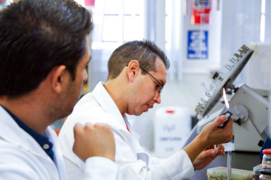 Proponen simplificar importación de insumos para investigación científica