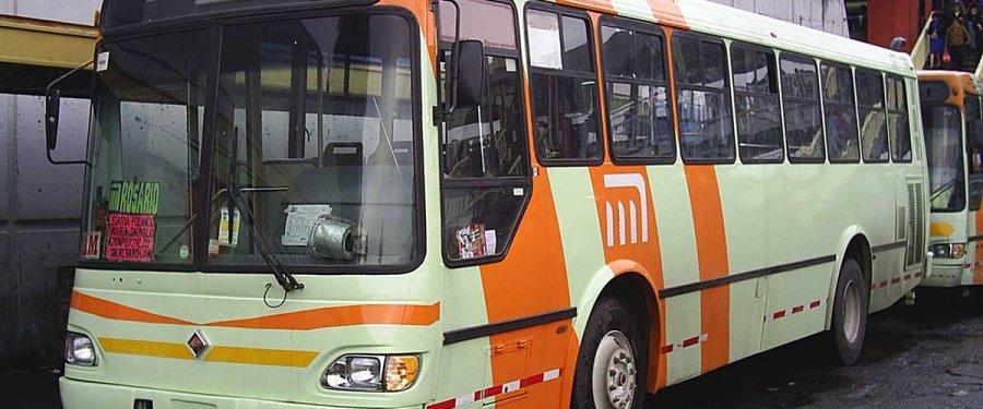 Sustituye temporalmente RTP a rutas 42 y 5 del transporte público concesionado