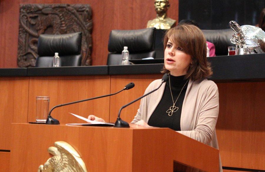 Promueve senadora flores escalera derechos de mujeres for Escaleras de piscinas para personas mayores