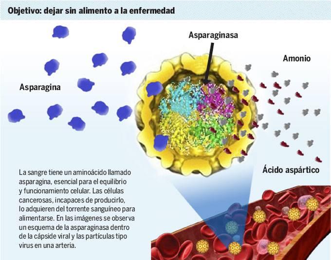 Desarrollan en la UNAM nanofármaco para combatir la leucemia